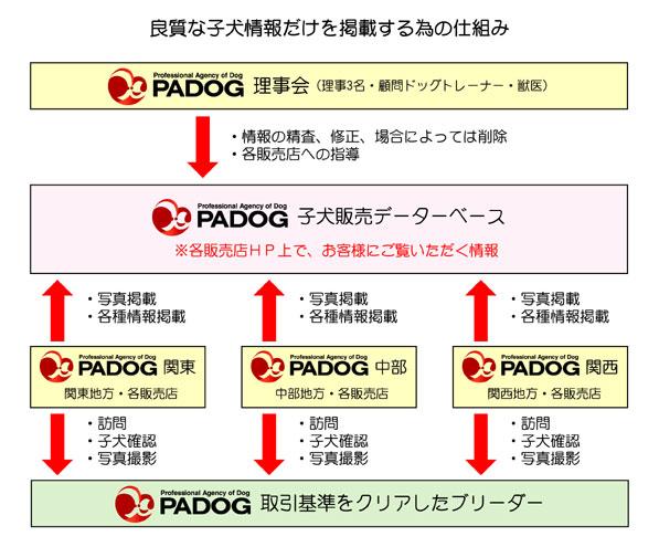 padog_flow
