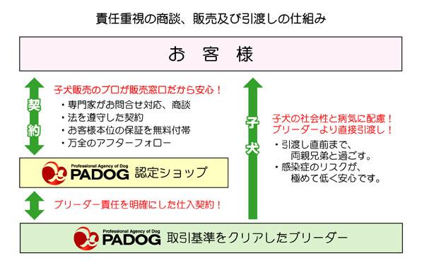 padog_flow2